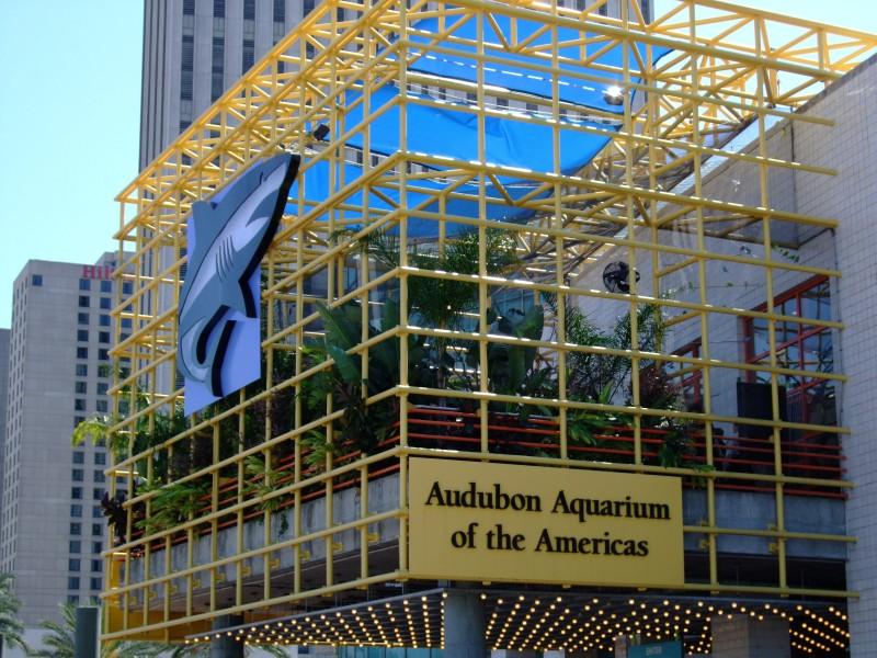Aquarium Of Americas New Orleans Easy Travel Guide